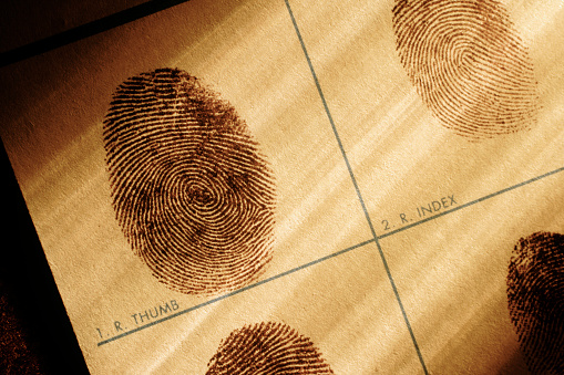 Individuality「Fingerprints Chart」:スマホ壁紙(3)