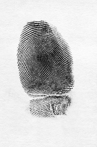 Identity「Fingerprint」:スマホ壁紙(7)