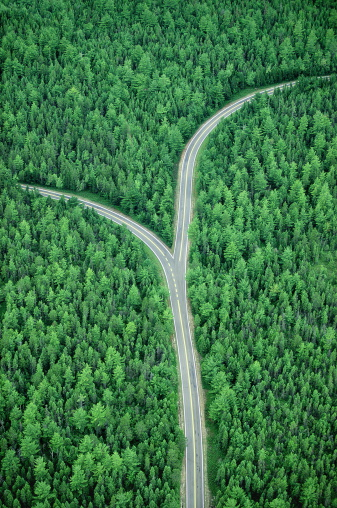 On The Move「Fork in road through forest, aerial (Digital Composite)」:スマホ壁紙(13)