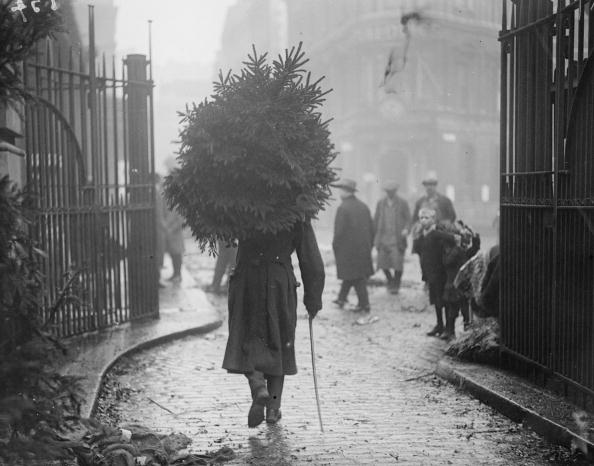 Tree「A Soldier's Christmas」:写真・画像(2)[壁紙.com]
