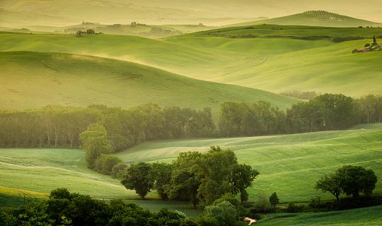 Agricultural Building「Landscape of Tuscany」:スマホ壁紙(13)