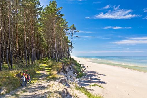 Meteorology「Path at the seashore, Baltic sea」:スマホ壁紙(3)