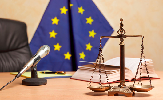 Legal System「Recess time in European Court」:スマホ壁紙(13)