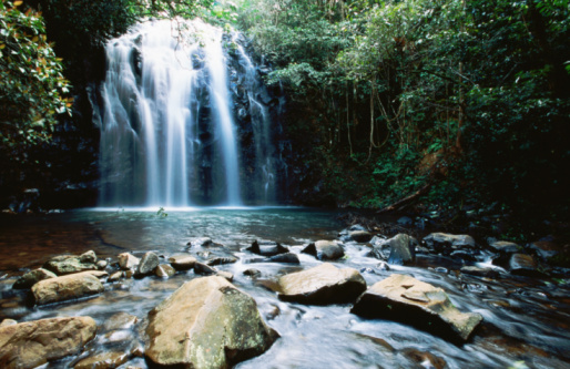 Queensland「Millaa Millaa Falls, Atherton Tablelands, Queensland, Australia, Australasia」:スマホ壁紙(1)