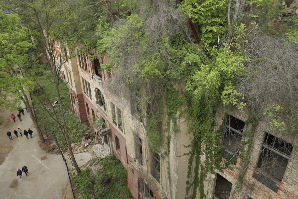 Beelitz「Elevated Treetop Path Leads Over Sanatorium Ruin」:写真・画像(19)[壁紙.com]
