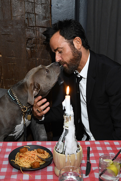 """Film and Television Screening「Cinema Society Hosts Special Screening Of Disney+'s """"Lady And The Tramp"""" - After Party」:写真・画像(0)[壁紙.com]"""