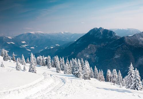 Snowdrift「Winter Landscape」:スマホ壁紙(2)
