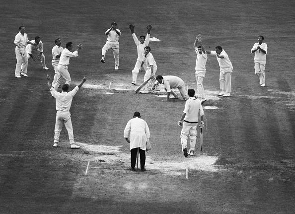 Fielder「Winning Cricket」:写真・画像(4)[壁紙.com]