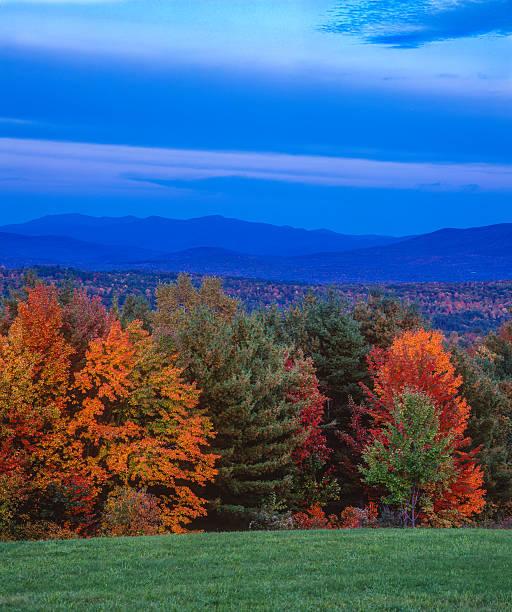 夕暮れ秋の葉の緑の山々、VT(P):スマホ壁紙(壁紙.com)