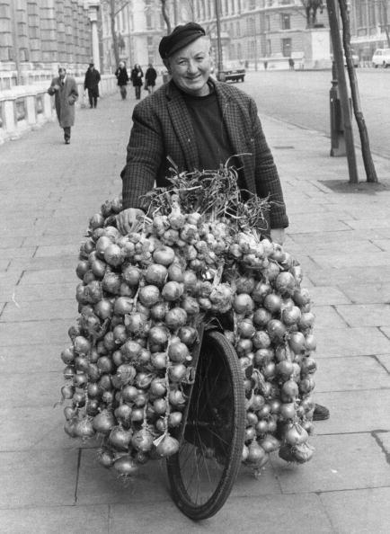 Onion「French Onions」:写真・画像(8)[壁紙.com]