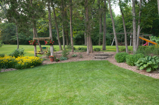 Gardening「Suburban backyard in America」:スマホ壁紙(0)