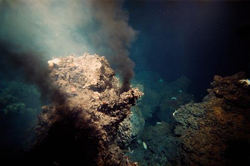 1980-1989「Hydrothermal Vent」:スマホ壁紙(16)
