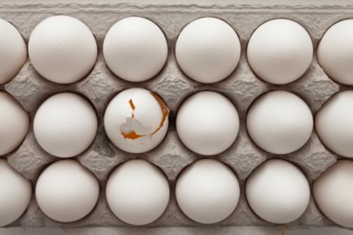 Individuality「Eggs in carton」:スマホ壁紙(19)