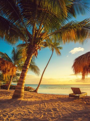 Caribbean「Caribbean beach」:スマホ壁紙(17)