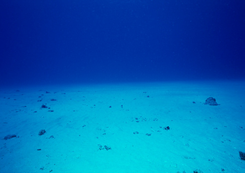 Northern Mariana Islands「Bottom of Sea」:スマホ壁紙(1)