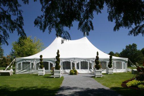 Entertainment Tent「large white party canopy in the park」:スマホ壁紙(8)