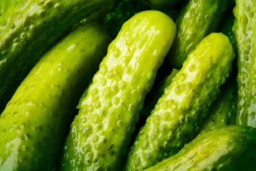 Tasting「Baby Pickles」:スマホ壁紙(8)