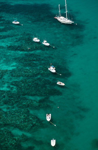1980-1989「Overview of Boats in Coral Reef State Park」:スマホ壁紙(9)