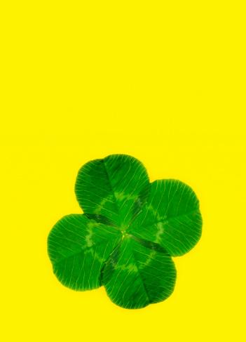 Hope - Concept「Lucky four leaf clover with copy space」:スマホ壁紙(9)