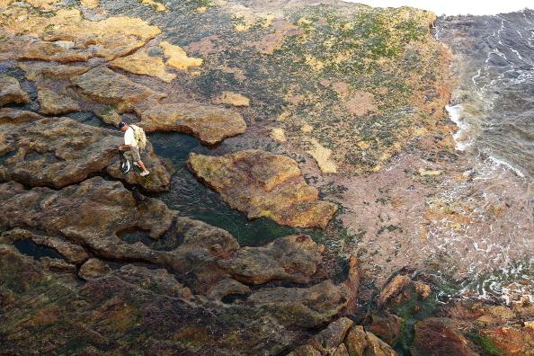 Fisherman「Rock Fishing In Sydney」:写真・画像(11)[壁紙.com]