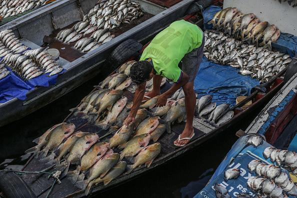 Fisherman「Coronavirus Pandemic Overwhelms Brazilian City Of Manaus」:写真・画像(9)[壁紙.com]