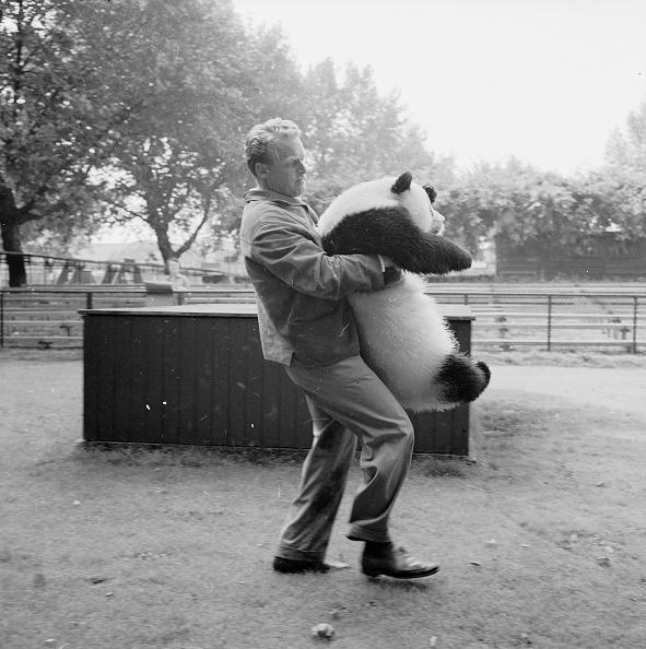Austrian Culture「Bear Hug」:写真・画像(13)[壁紙.com]