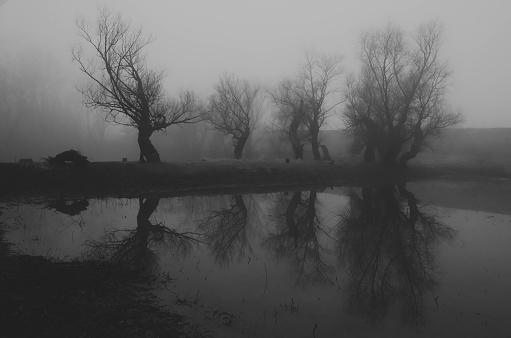Atmosphere「Dark spooky landscape」:スマホ壁紙(4)
