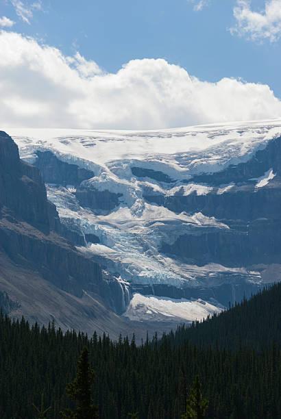 Mount Athabasca:スマホ壁紙(壁紙.com)