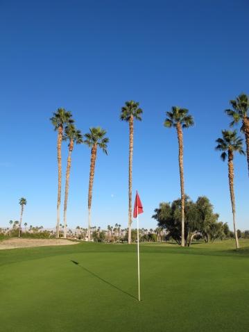 Sand Trap「Lush green golf course in the Palm Springs desert」:スマホ壁紙(19)