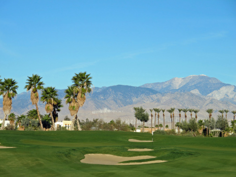 Sand Trap「Lush green golf course in the Palm Springs desert」:スマホ壁紙(10)