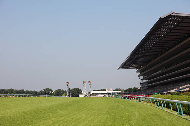 Wide-view of empty horse racing track with big stands:スマホ壁紙(壁紙.com)