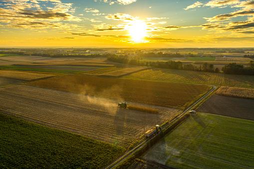 田畑「収穫された農地に沈む夕日」:スマホ壁紙(9)