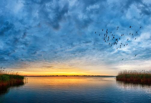 Flock Of Birds「sunset over Danube river」:スマホ壁紙(7)