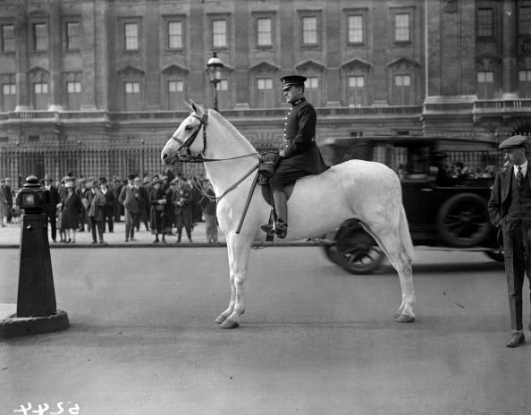 Horseback Riding「Mounted Policeman」:写真・画像(9)[壁紙.com]