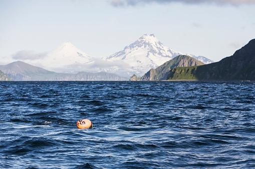 Volcano Islands「Shishaldin Volcano And Isanotski Peaks In The Background Of The Rugged Cliff Shoreline Of Cape Pankof On Unimak Island, Eastern Aleutian Islands」:スマホ壁紙(12)
