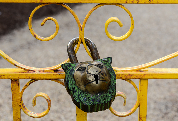 Offbeat「Finishing Touches Are Applied To The New Lion's Enclosure At London Zoo」:写真・画像(17)[壁紙.com]