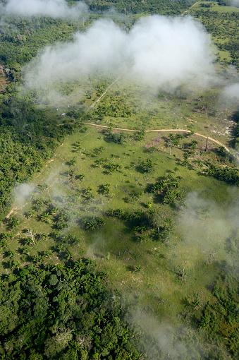 Amazon Rainforest「Brazil, Para, Itaituba, Amazon rainforest, slash and burn, reclamation of pastureland」:スマホ壁紙(18)