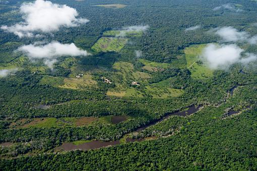 Amazon Rainforest「Brazil, Para, Itaituba, Amazon rainforest, slash and burn, reclamation of pastureland」:スマホ壁紙(19)