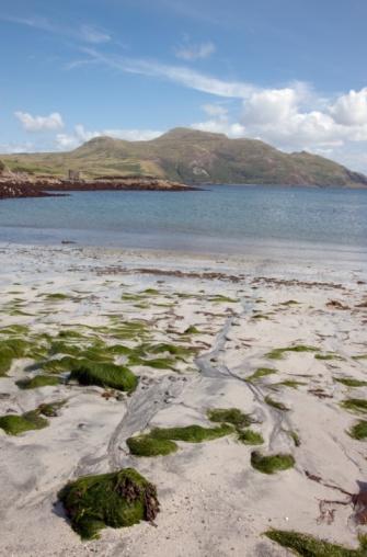 Island of Arran「Sandy beach, Island of Arran, Scotland」:スマホ壁紙(18)