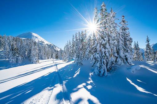 Skiing「star shape sun in snowcapped winter mountain landscape」:スマホ壁紙(14)