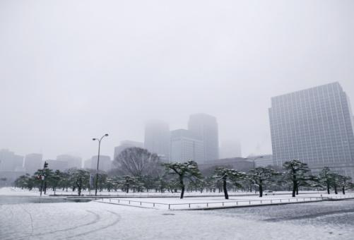 Tokyo - Japan「Japan, Tokyo, Park and skyscrapers in snow」:スマホ壁紙(3)