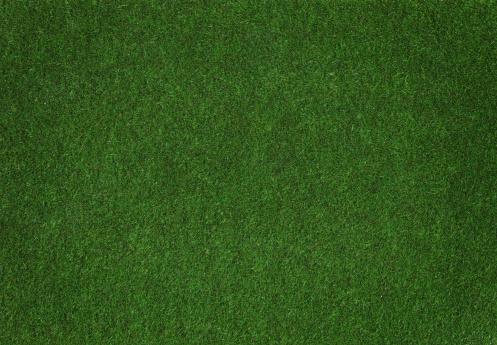 Artificial「Grass」:スマホ壁紙(0)