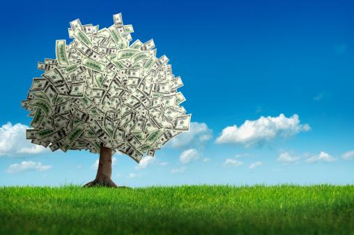 Perks「money tree」:スマホ壁紙(15)