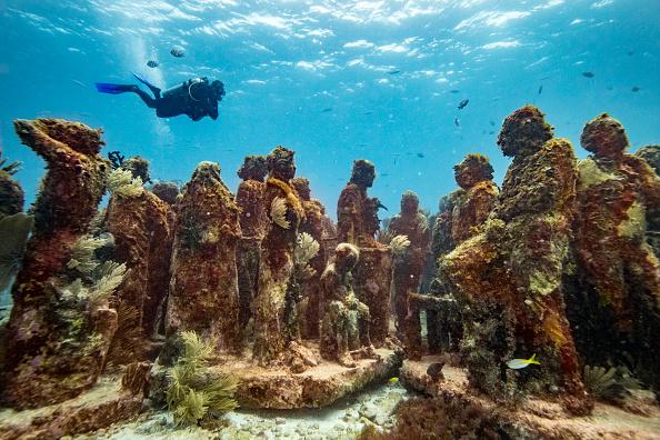Underwater「Yucatan Peninsula」:写真・画像(1)[壁紙.com]