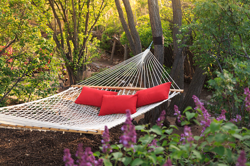 Weekend Activities「hammock with three red pillows」:スマホ壁紙(16)