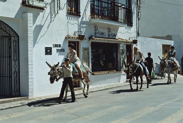 Mijas「Malaga Donkeys」:写真・画像(0)[壁紙.com]