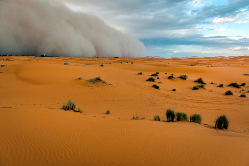 Approaching「Sandstorm Approaching Merzouga Settlement,in Erg Chebbi Desert Morocco, North Africa」:スマホ壁紙(8)