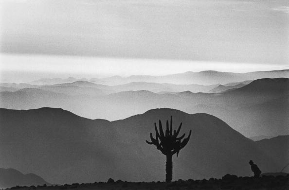 Mountain Range「View from The Andes」:写真・画像(3)[壁紙.com]