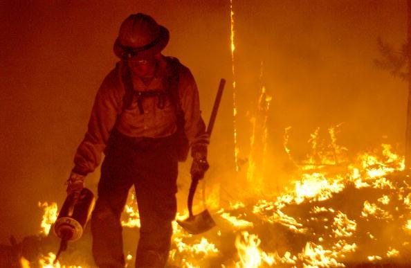 Aspen Tree「Firefighters Work To Control Arizona Blaze」:写真・画像(7)[壁紙.com]