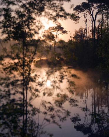 North Brabant「Sunrise at a lake in the south of the Netherlands」:スマホ壁紙(2)